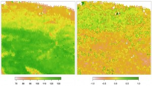 Left: average length of growing season (days). Right: corresponding temporal changes (days/year). Both are based on 1982-2011 data. (Source: http://www.mdpi.com/journal/remotesensing/special_issues/monitoring_global)