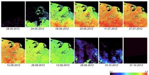 Series of MODIS NDVI images for the 2011 growing season (Source: https://lpdaac.usgs.gov/products/modis_products_table/mod13a1)