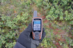 Let's meet next year in the tundra again, behind the Alnus 12 bush ... (Photo: M. Schaepman, July, 2013).