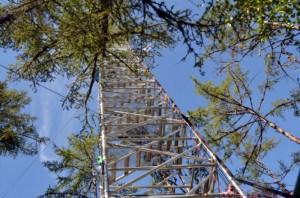 Spasskaya Pad flux tower (Photo: M. Iturrate, August 2013).