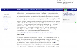 PDF_Button_aktiv