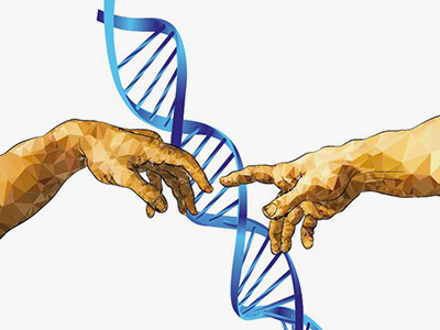 Human hands and DNA helix